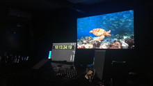 BP2 - Coral Reef Final Mix