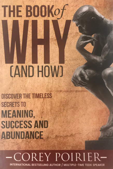 The Book of Why - wellness quote inclusion