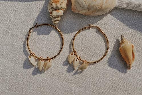 Boucles d'oreilles - Shells