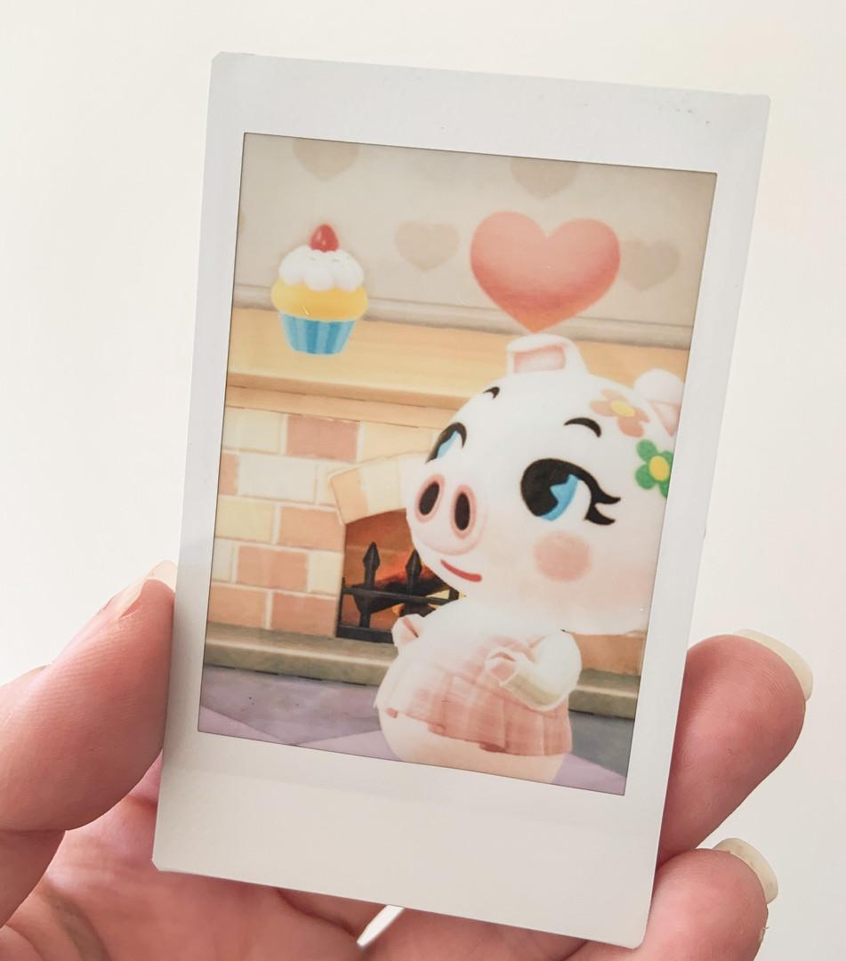 One Custom Polaroid Amiibo