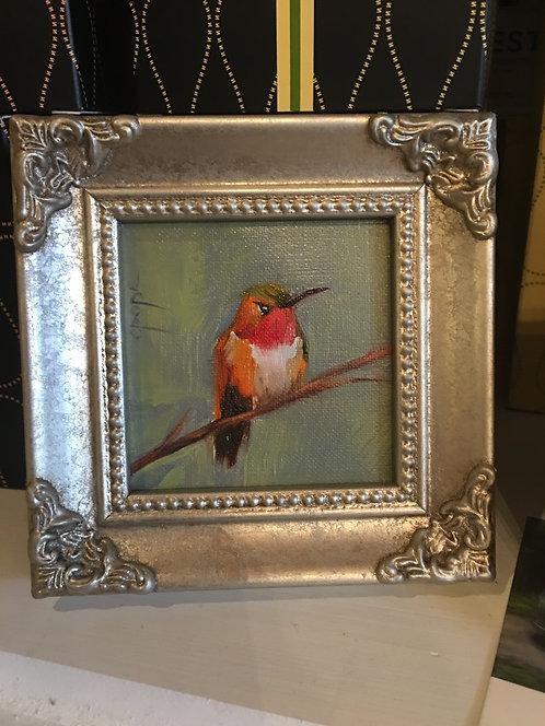 Hummingbird 024