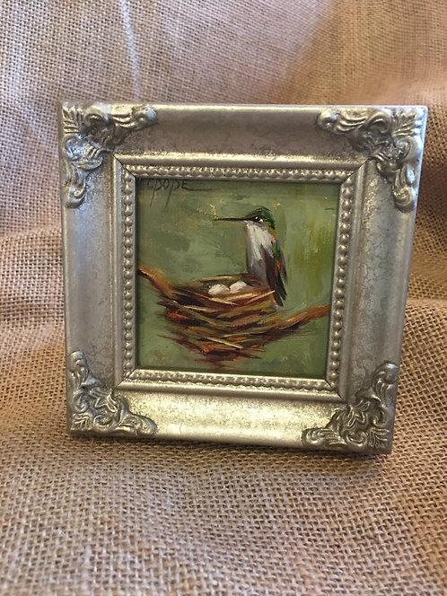 Hummingbird 021