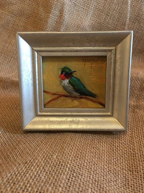 Hummingbird 022
