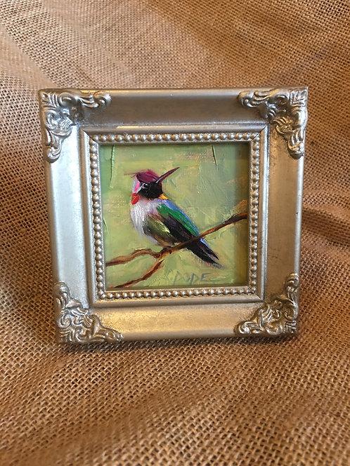 Hummingbird 016