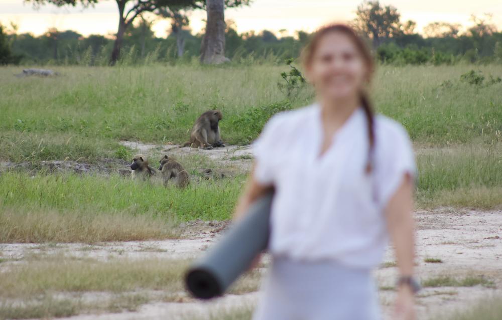Yoga in the Wild
