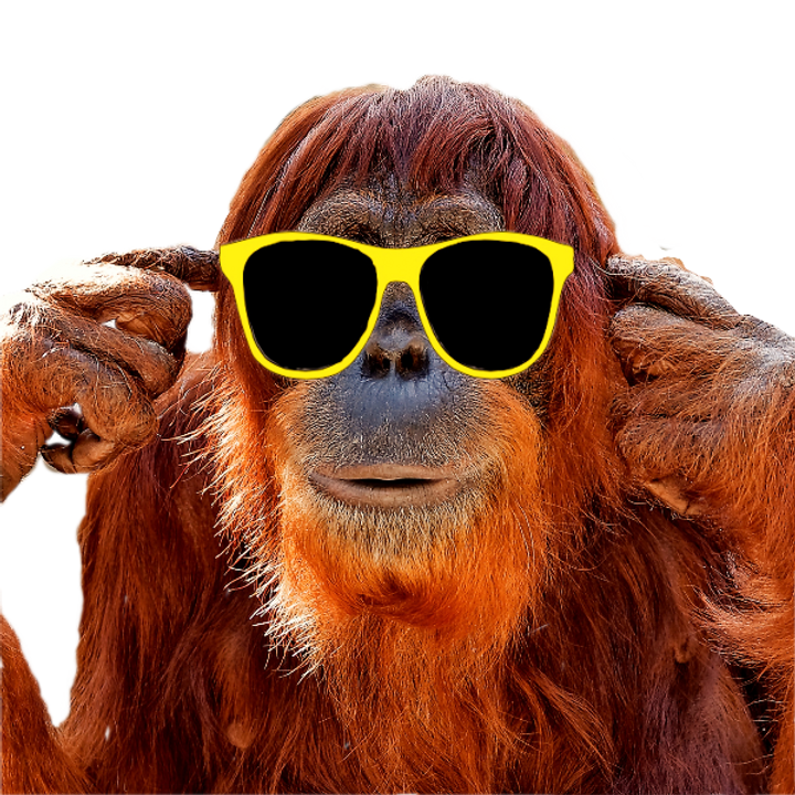 monkey_edited_edited_edited_edited.png