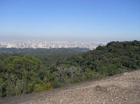 Parque Estadual da Cantareira (núcleo Pedra Grande)