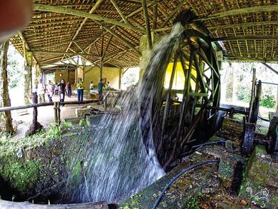 Parque Estadual da Serra do Mar (núcleo Picinguaba) e Quilombo da Fazenda