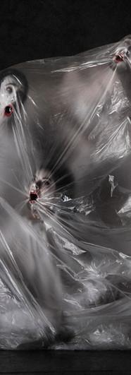 submersionbaroqueweb2.jpg