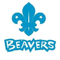 beavers-vector.jpg