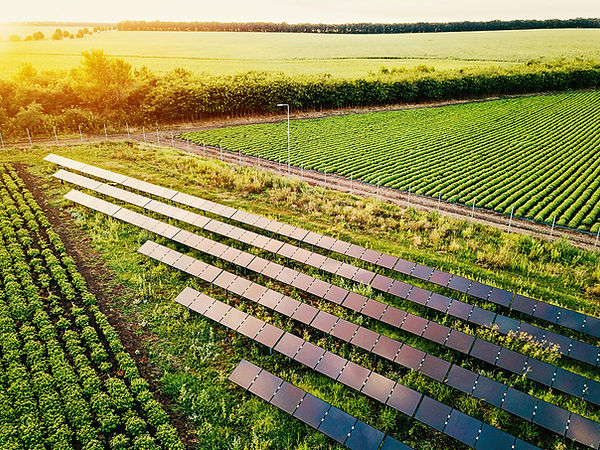 solar_agrivoltaics_farm_Getty_Images.jpg