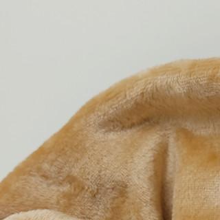 Coralina Camel