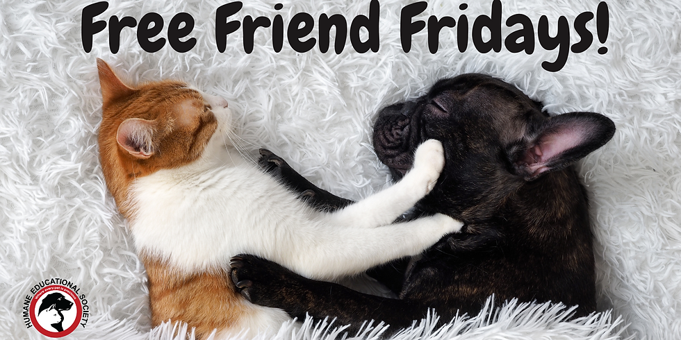 Free Friend Fridays