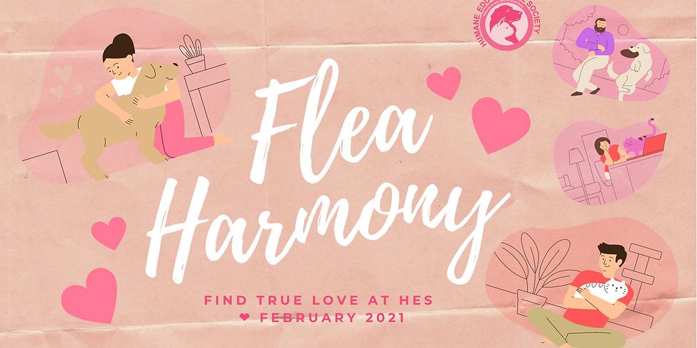 FleaHarmony