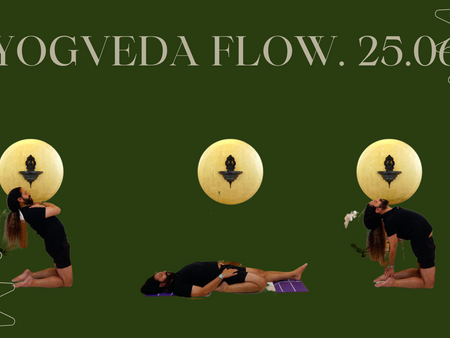 NEW YOGA VIDEOS FOR RENT