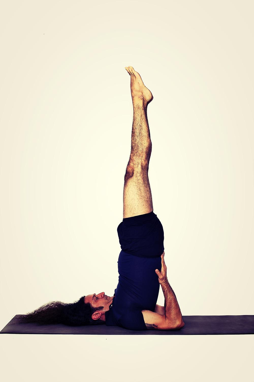 Yoga In Bern. Yogveda Yoga.Sarwangasana
