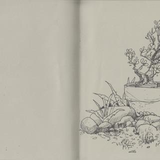 sketchbook (25-26)  27