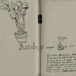 sketchbook (25-26)  49