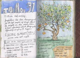 sketchbook (23) 12