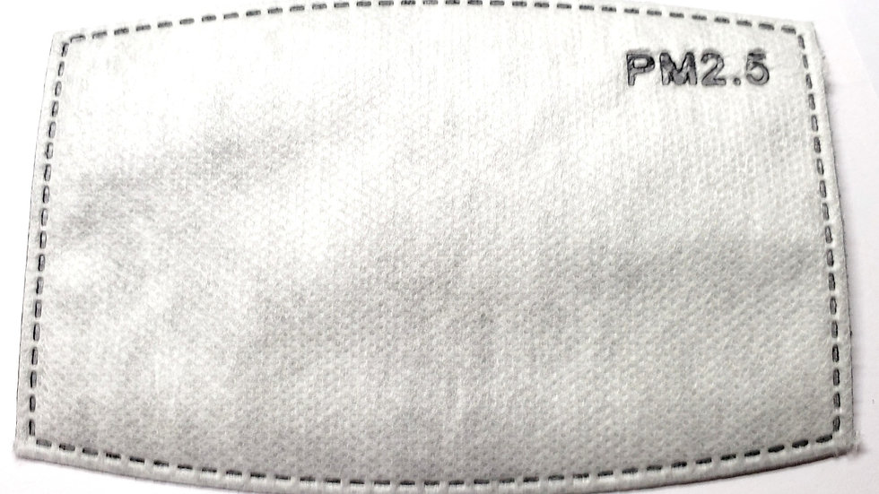 PM 2.5 Face Mask Filters (package of 10)