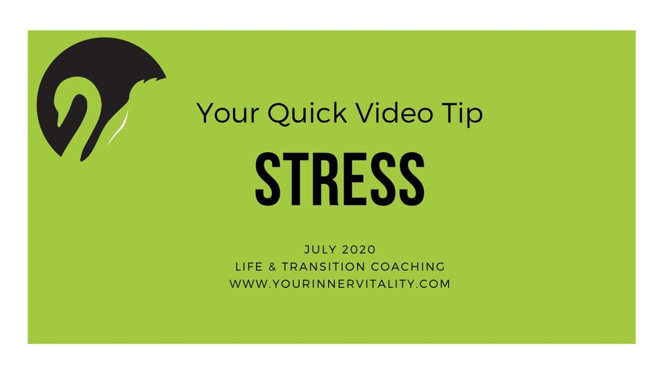 July' Focus Stress
