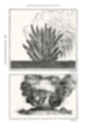 Pages de DESORDRES.MA.DEF(2)-4.jpg