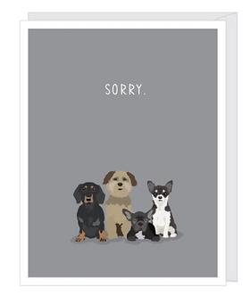 Sympathy - Pet Loss