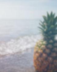 pineapple%20sage_edited.jpg