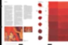 Pigmente_Beispielseite_1.png