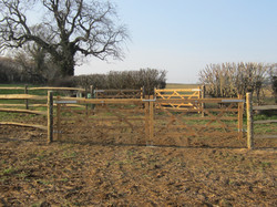 Cleft chestnut post & rail