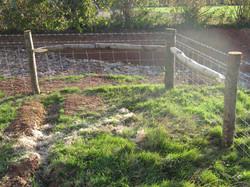 Stock fence. sloman 2015 (2)