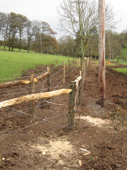 Barbed wire/ plain wire fencing