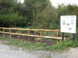 Oak post & rail fencing