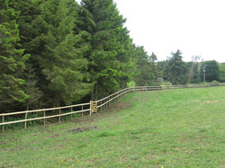 Post and two rail fencing