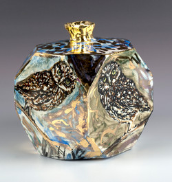 1. owl box 19
