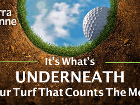 Carbon: Stimulate Your Turf's Microbial Activity