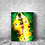 Thumbnail: TOILE EFFET BUNDLE BURN