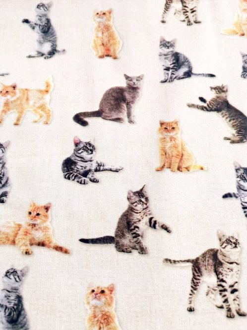 Quilting Cotton - Cat Print - Multi