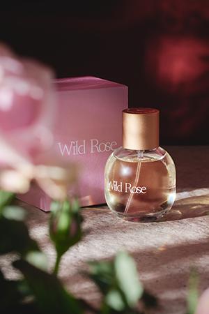 WildRoseBox_1024x.png