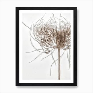 m_gen_art-print-std-portrait-framed-blac