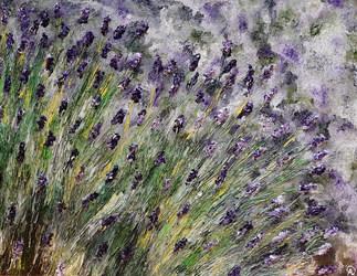 lavender-field_orig.jpg