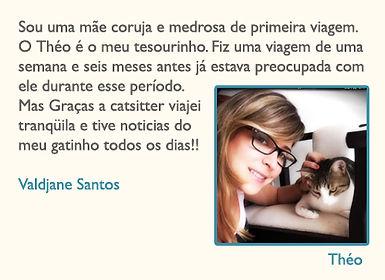 catsitter4