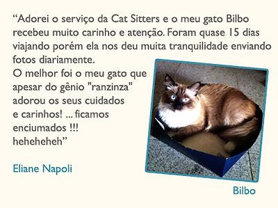 catsitter3