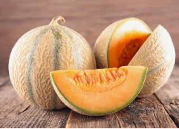 Melon - Lot de 3