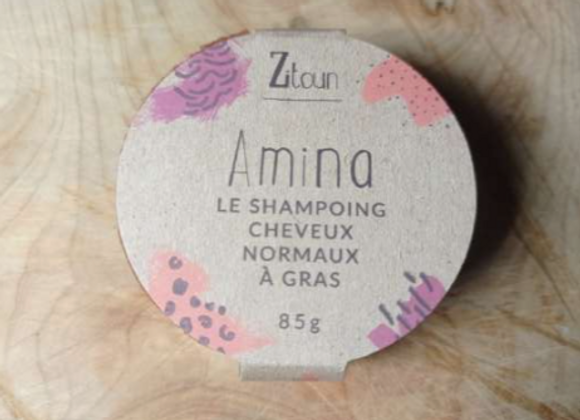 Shampoing solide - Cheveux normaux à gras