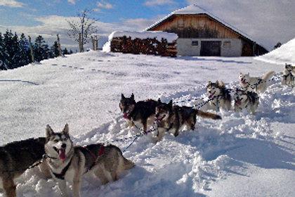 Camp d'hiver 12-15 ans