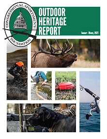 2021 Q1 Report_cover page.png