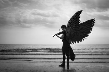 'Sonata' by Judith Kimber ( 10.5 marks )
