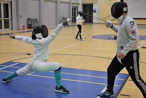 Fencing-1024x683.jpg