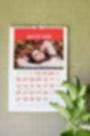 Calendario Skinny Imagen.png